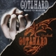 Gotthard :Need To Believe/Firebirth