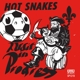 Hot Snakes :Audit In Progress
