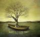 Flinner,Matt Trio :Winter Harvest