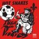 Hot Snakes :Audit In Progress (MC)