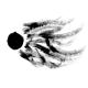 Agf/Various :Dissidentova
