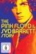 Pink Floyd/Barrett,Syd :The Pink Floyd & Syd Barrett Story (2DVD)