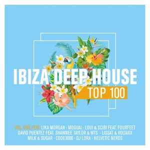 VARIOUS - IBIZA DEEPHOUSE TOP 100 VOL.1