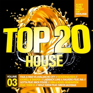 VARIOUS - TOP 20 - HOUSE VOL.3