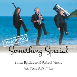 NUSSBAUMER,GEORGE & WESTER,RIC - SOMETHING SPECIAL - ON STRINGS