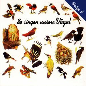 VOGELSTIMMEN - SO SINGEN UNSERE VÖGEL 5