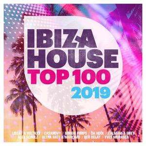 VARIOUS - IBIZA HOUSE TOP 100 2019