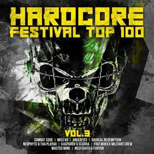 VARIOUS - HARDCORE FESTIVAL TOP 100 VOL.3
