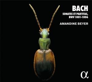Johann Sebastian Bach: Sonaten & Partiten BWV 1001-1006