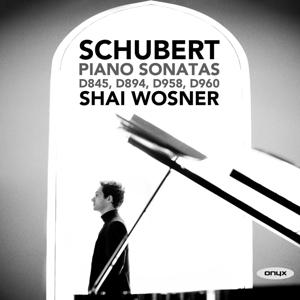 Franz Schubert: Klaviersonaten D 845, 894, 958 & 960