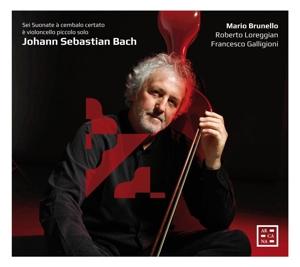 Johann Sebastian Bach: Sonaten BWV 1014-1019, bearb. für Violoncello piccolo